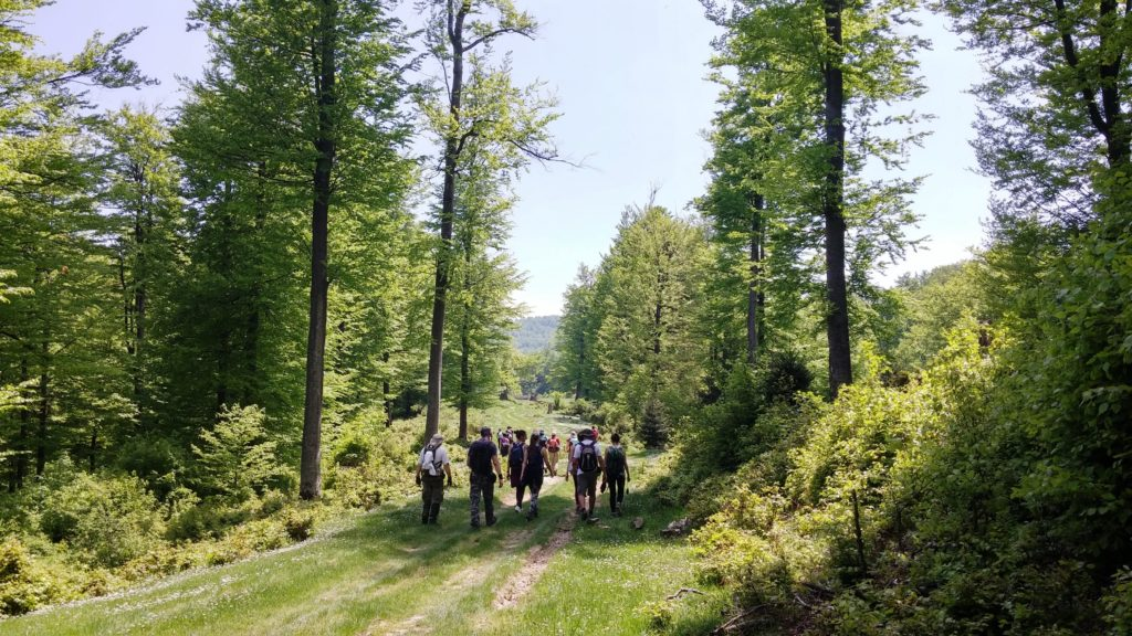 team building Serbia hiking
