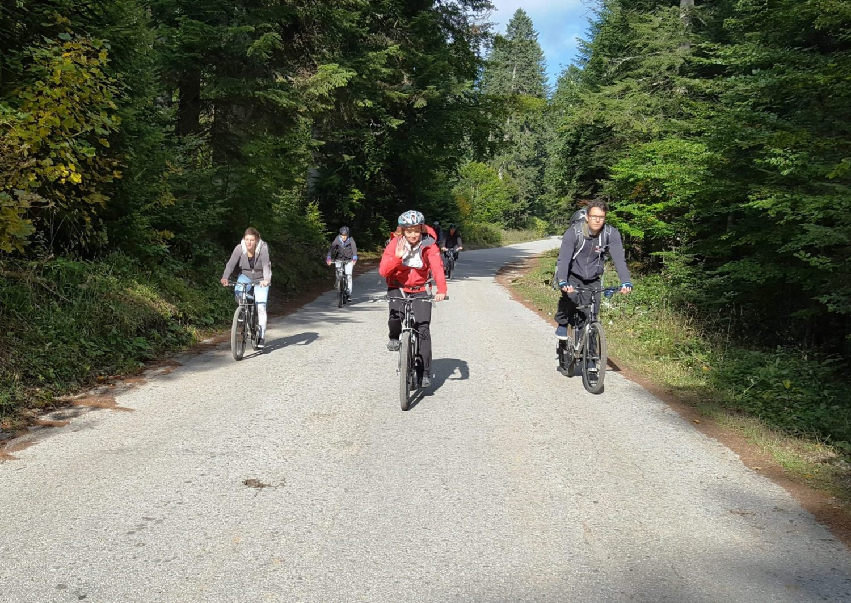 Mountain biking Tara