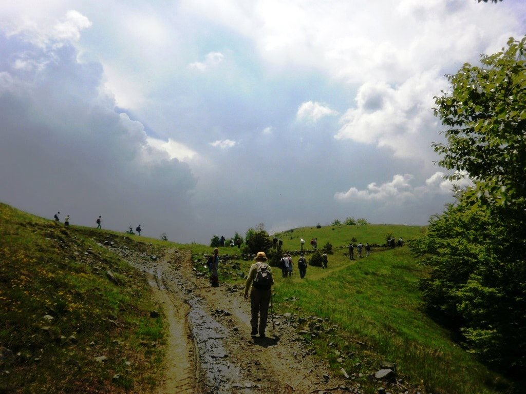 Divčibare hiking