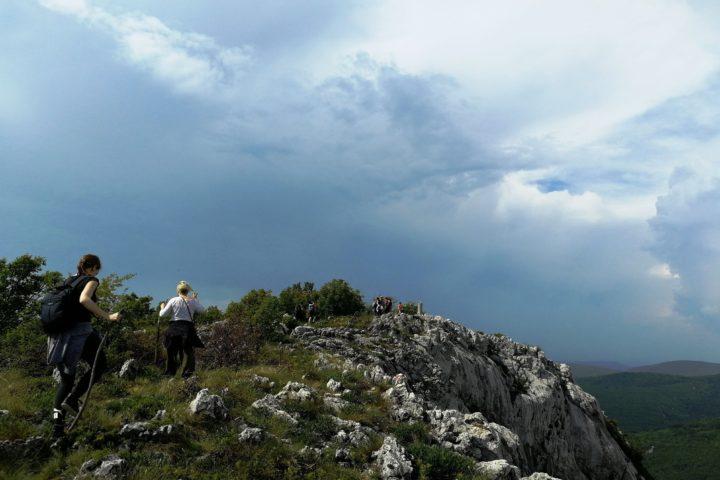 Homoljske Mountains