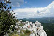 Homoljske planine