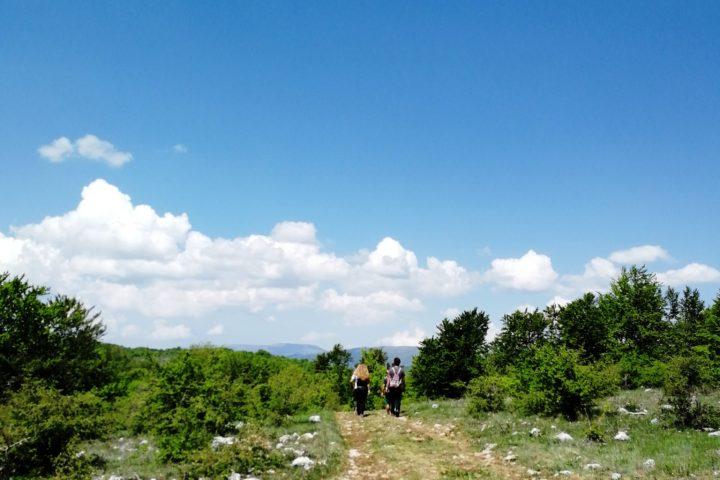Stara planina hiking
