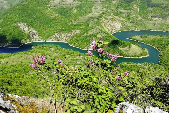 Zavojsko Lake, Stara planina