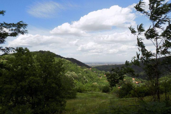 Fruška Gora pejzaž