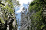 kanjon Beli Rzav Tara