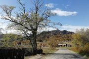 selo Borač