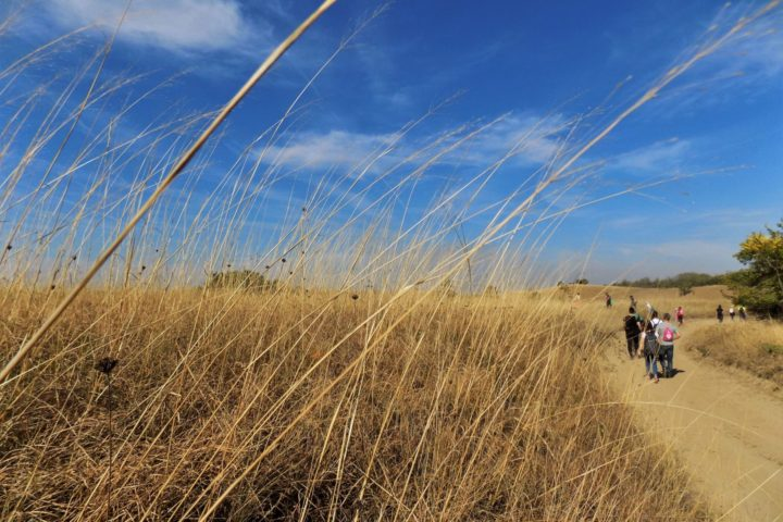 Zagajička brda hiking