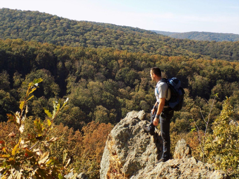 Fruška gora pešačke ture iz Beograda