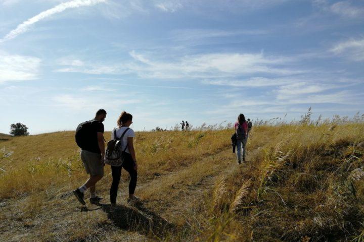 Zagajička brda jesen