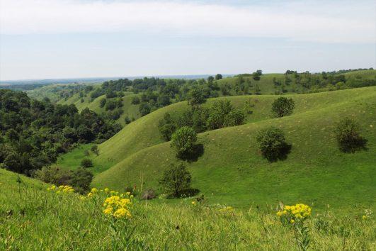 Zagajička brda proleće hiking
