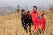 Planina Tornička Bobija u jesen