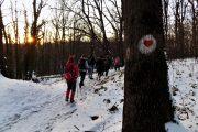 Fruška gora zimsko pešačenje