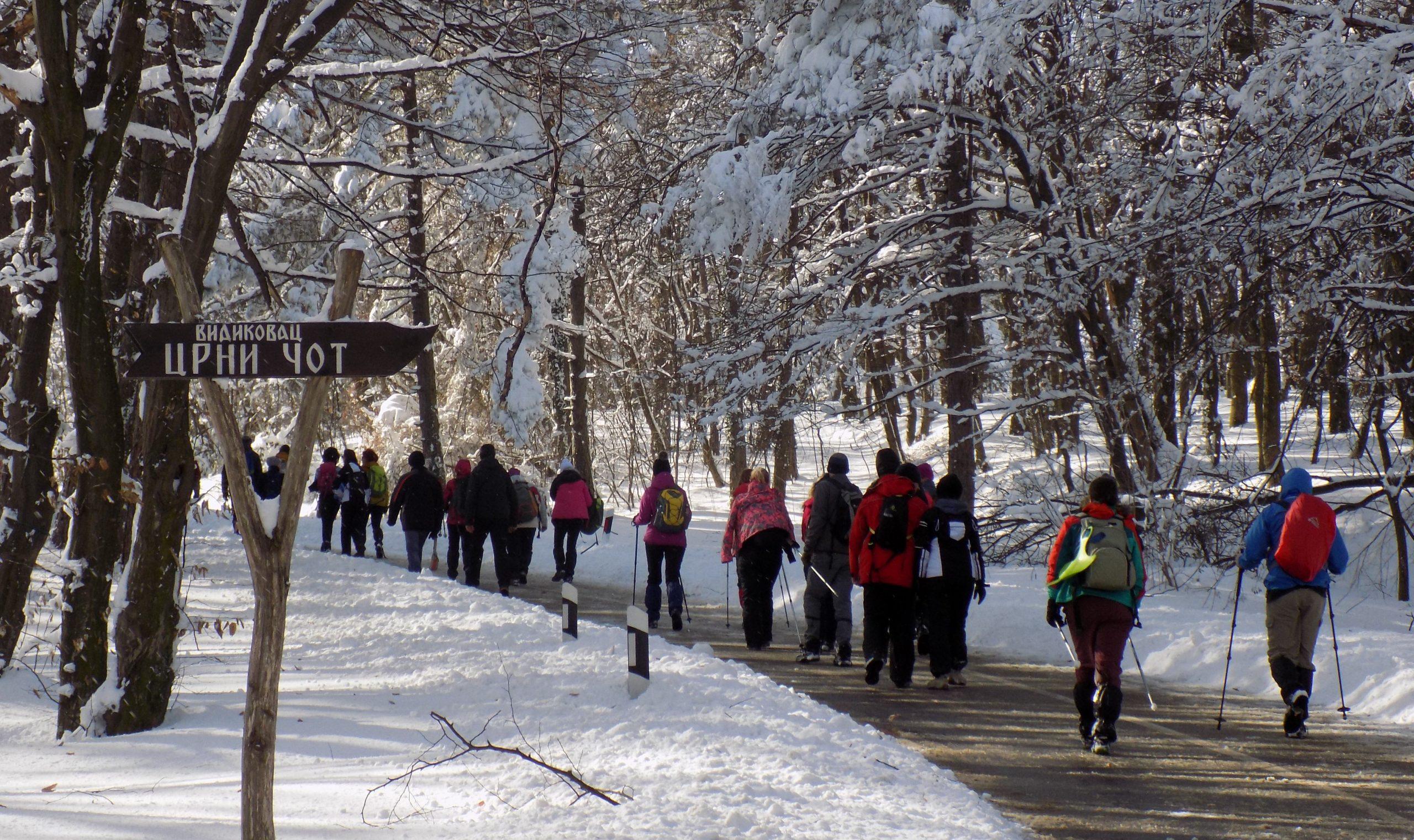 Fruška gora zimski hiking od Male Remete do Jazka