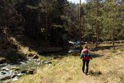 Divčibare hiking