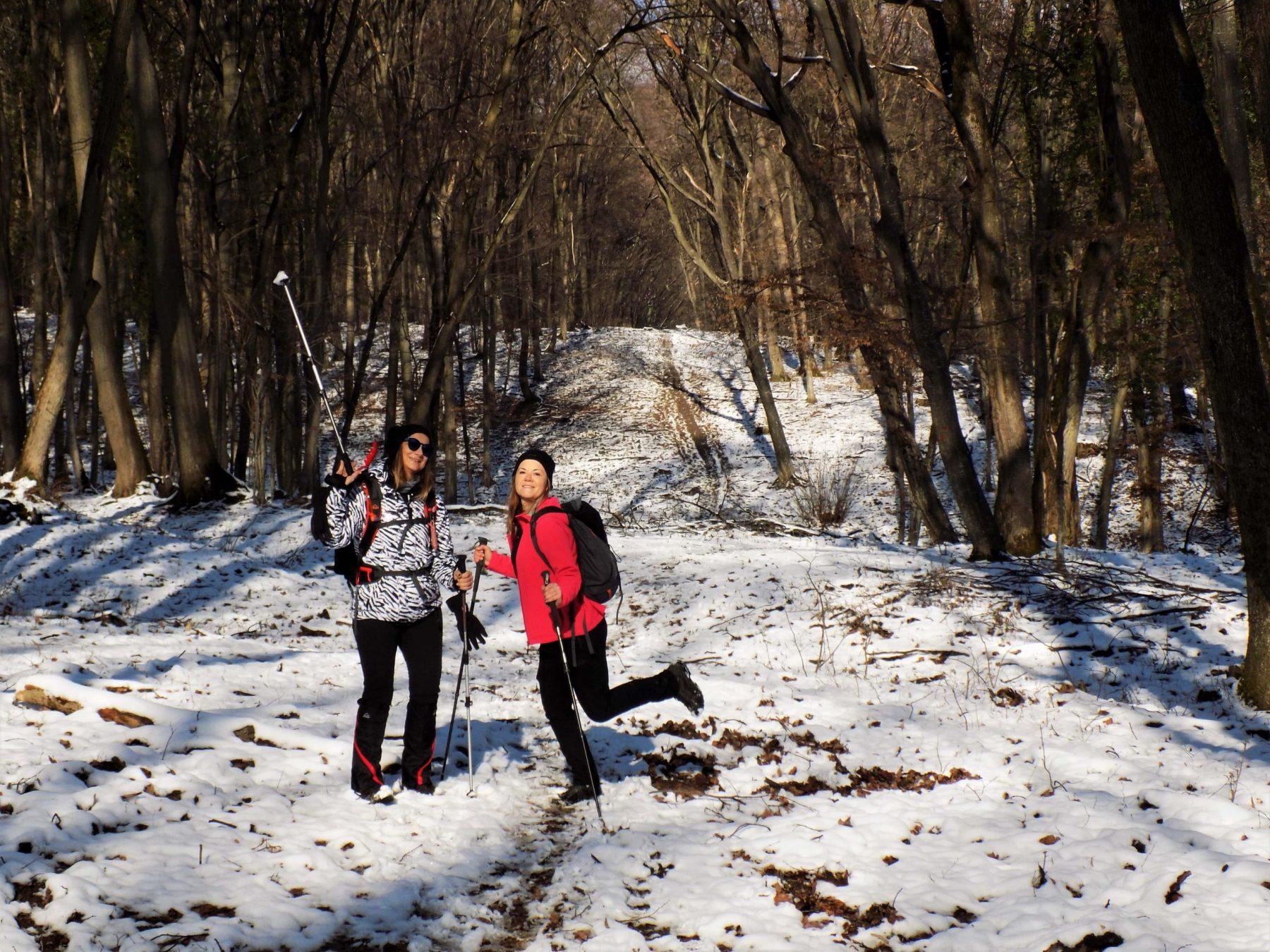 Fruška gora zimski hiking