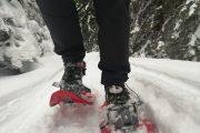 Goč zimska avantura na snegu