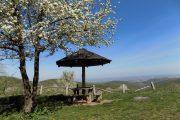 Izletište Brankovac Fruška gora