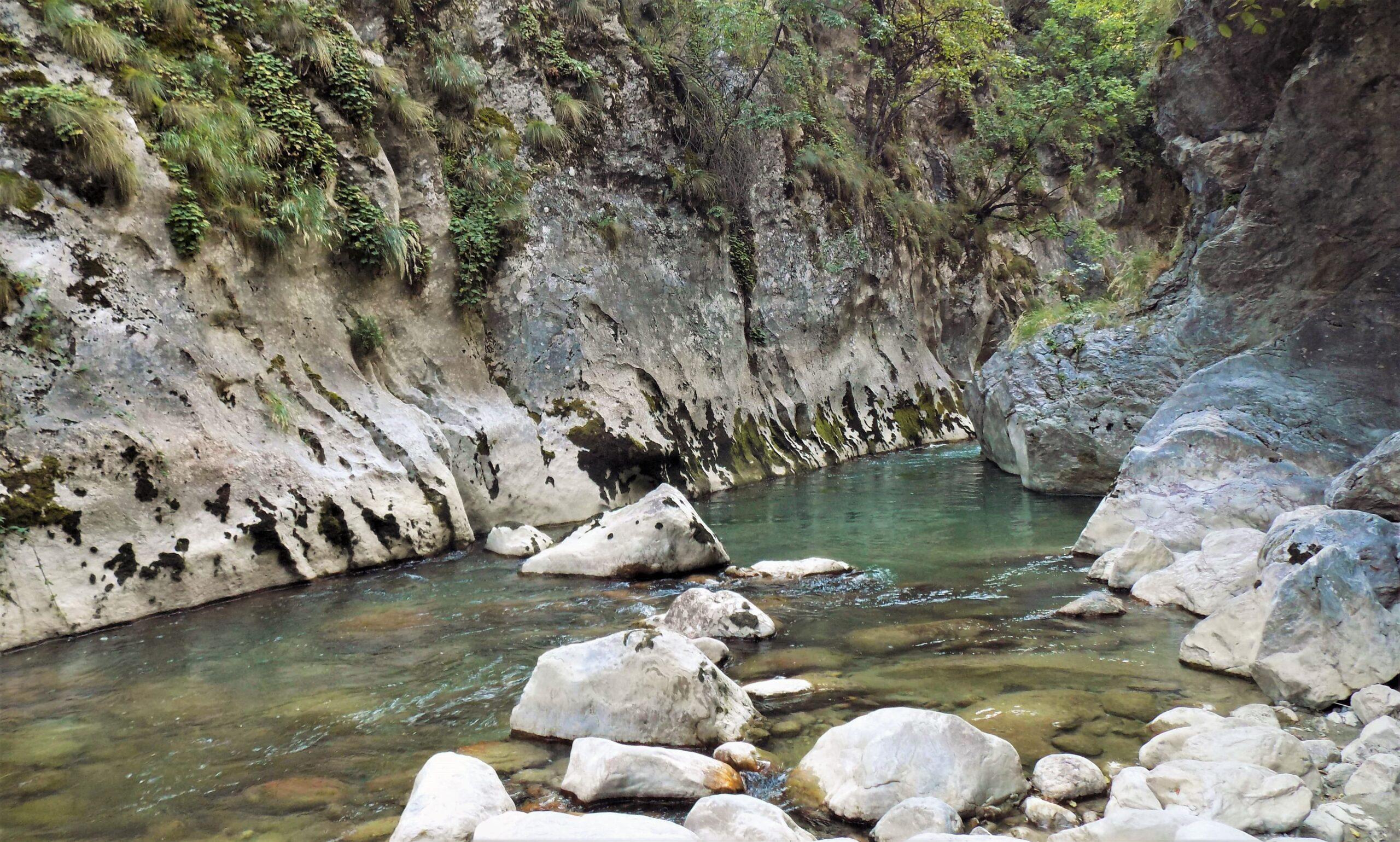 Kanjon i prerasti Vratne, Rogljevačke i Rajačke pivnice