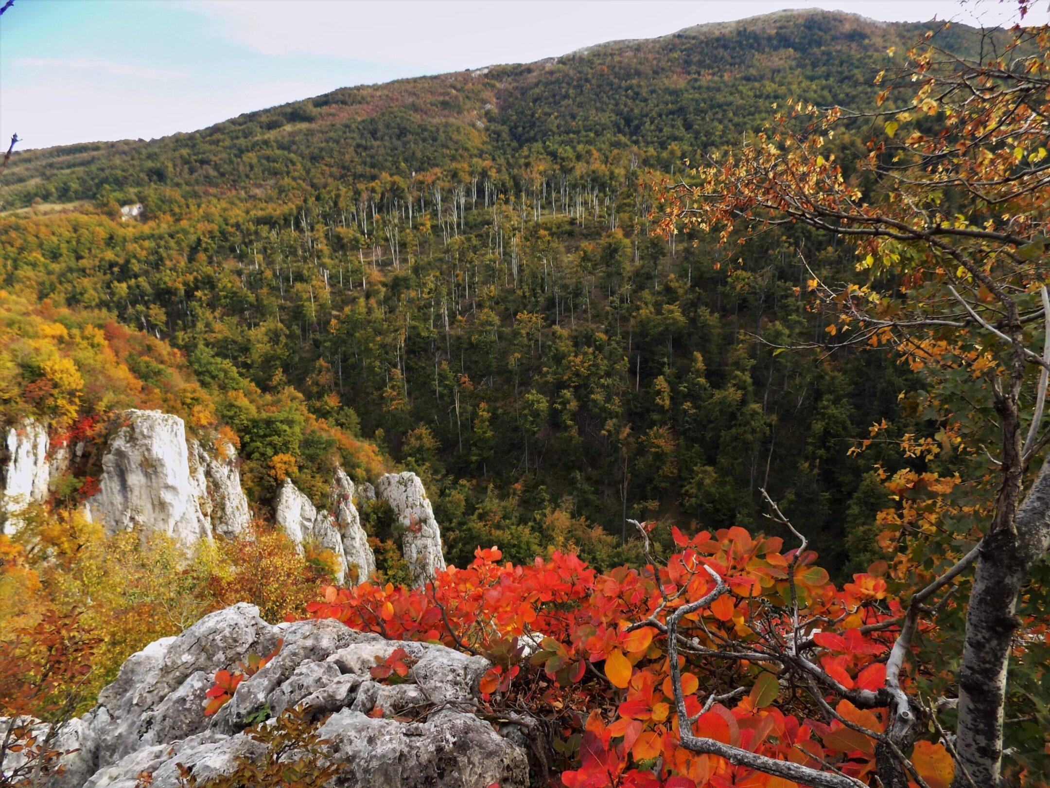 Lazarev kanjon i Malinik hiking